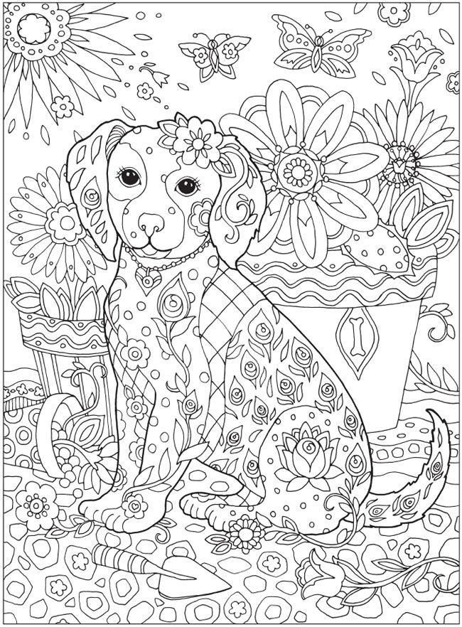 Dog Coloring Books For Adults  56 best images about Värityskuvia on Pinterest