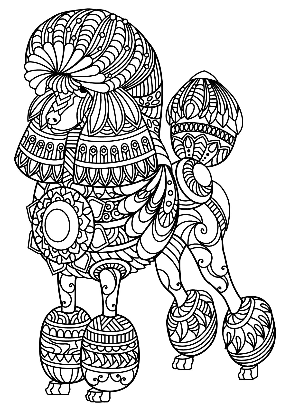 Dog Coloring Books For Adults  Free book dog poodle Dogs Adult Coloring Pages