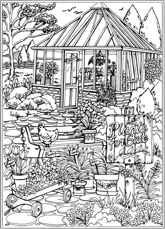 Dover Coloring Books For Adults  25 best ideas about Dover Publications on Pinterest