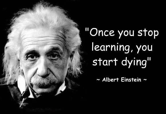 Einstein Education Quote  Education Sayings Education Quotes and Thoughts about