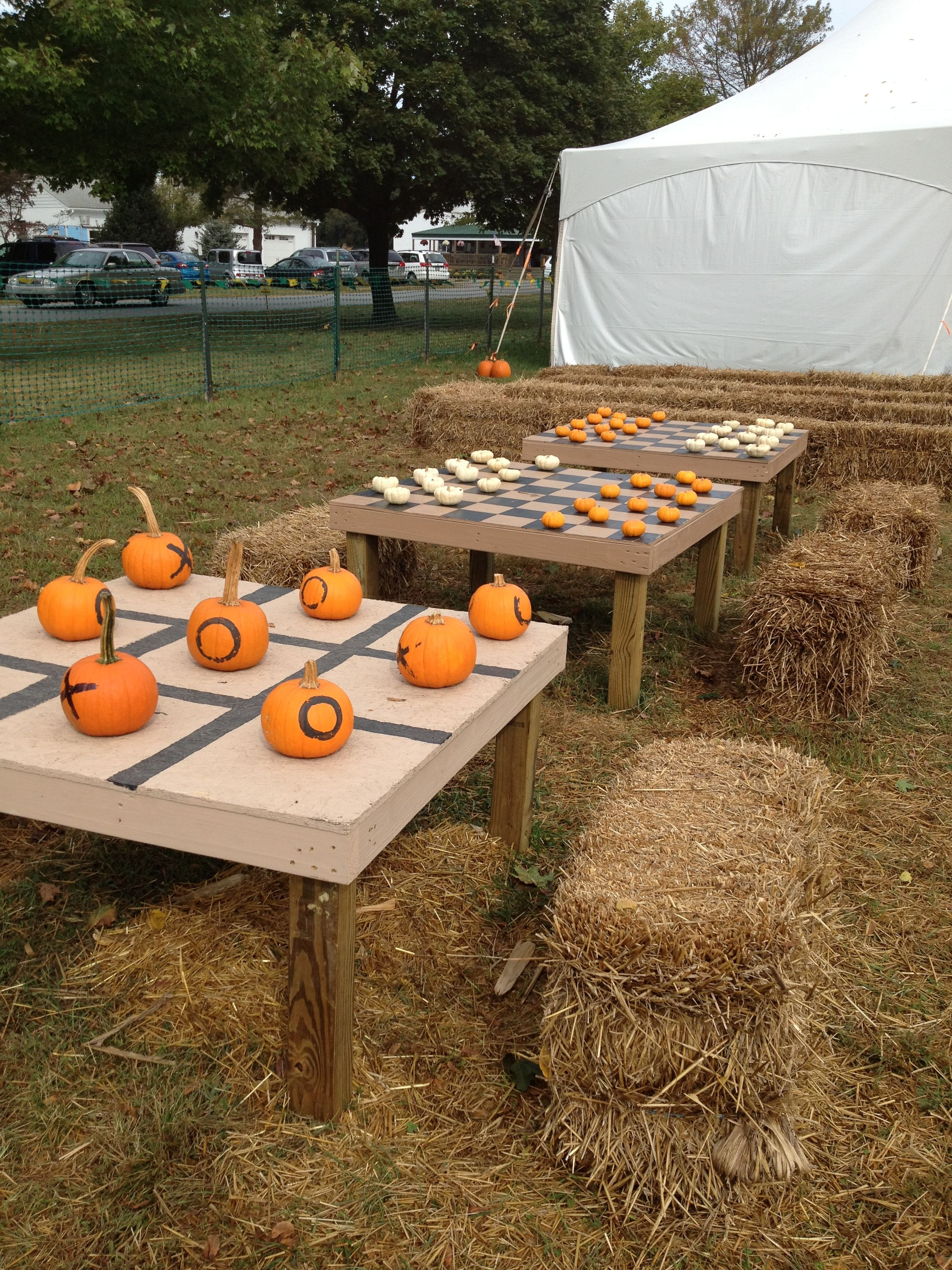 Fall Backyard Party Ideas  1000 ideas about Backyard Bonfire Party on Pinterest