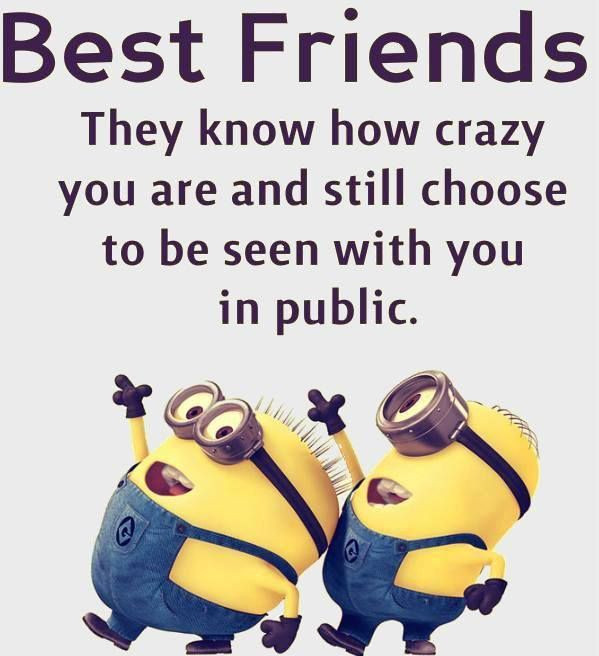 Famous Friendship Quotes  Top 30 Famous Minion Friendship Quotes – Quotes and Humor