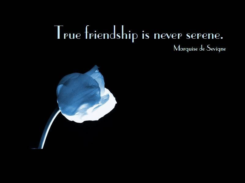 Famous Friendship Quotes  Famous friendship quotes funny friendship quotes