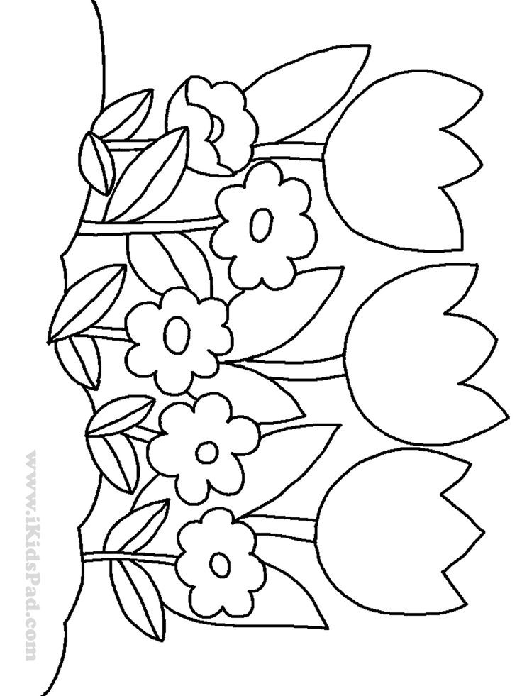 Free Flower Coloring Pages For Kids  row of tulip flowers coloring pages for kids