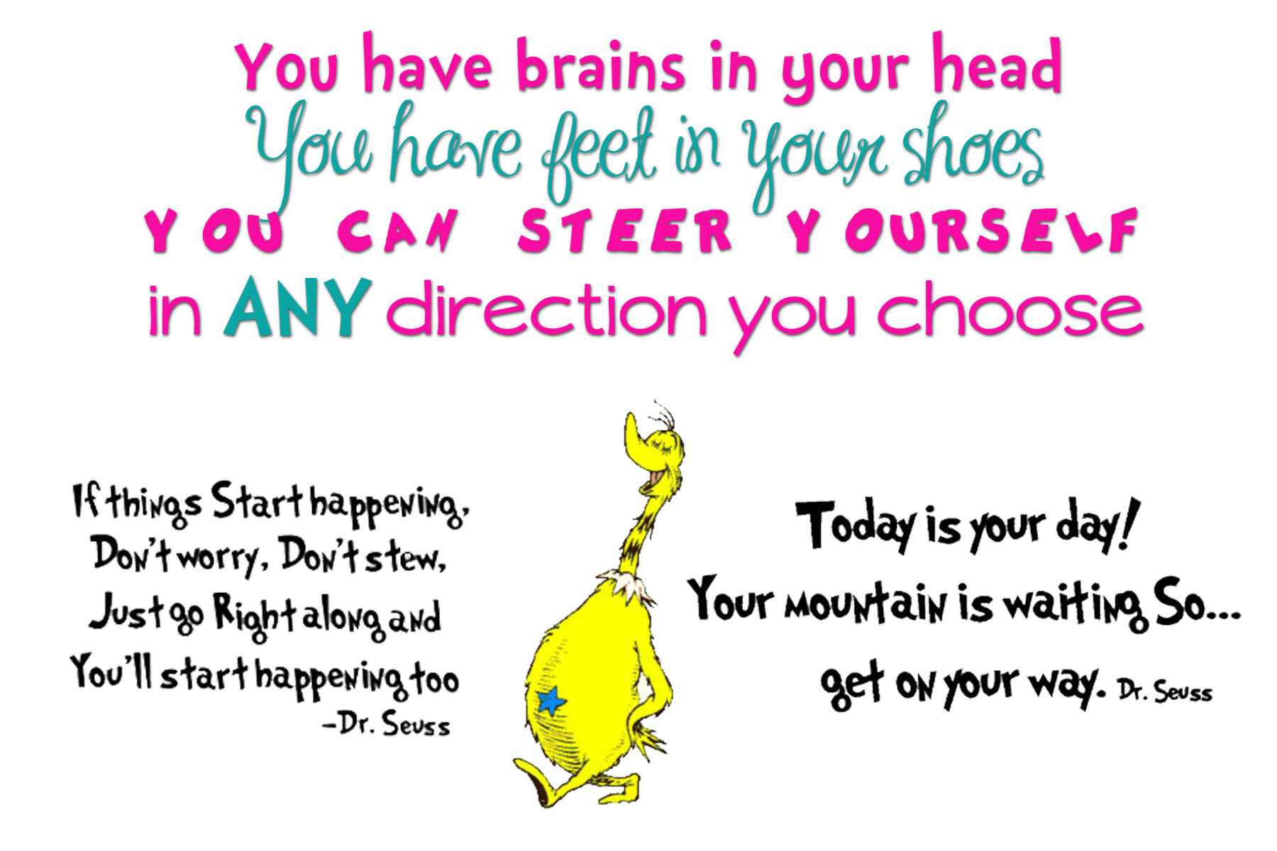 Funny Birthday Quotes For Kids  Happy Birthday Dr Seuss