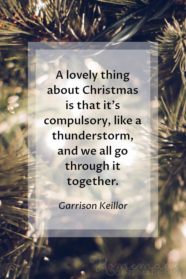 Funny Family Christmas Quotes  100 Best Christmas Quotes funny family inspirational
