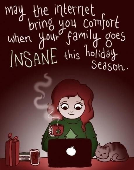 Funny Family Christmas Quotes  1000 images about DysFUNctional families normal on