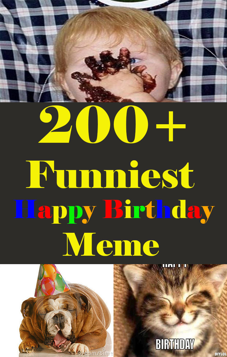 Funny Happy Birthday Photo  200 Funniest Birthday Memes for you Top Collections
