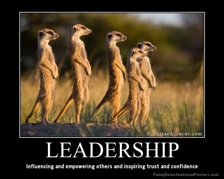 Funny Leadership Quotes  Leadership influencing and empowering others and inspiring
