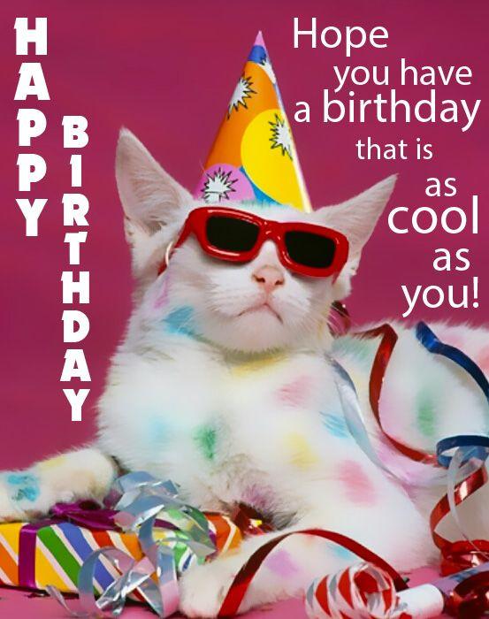 Happy Birthday Images Funny  Happy Birthday Funny Birthday eCards and Gifs