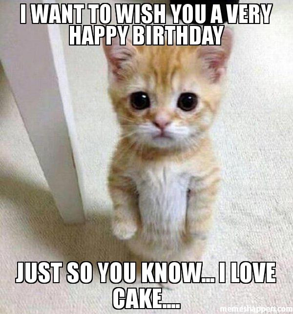 Happy Birthday Images Funny  50 Happy Birthday Funny For Women