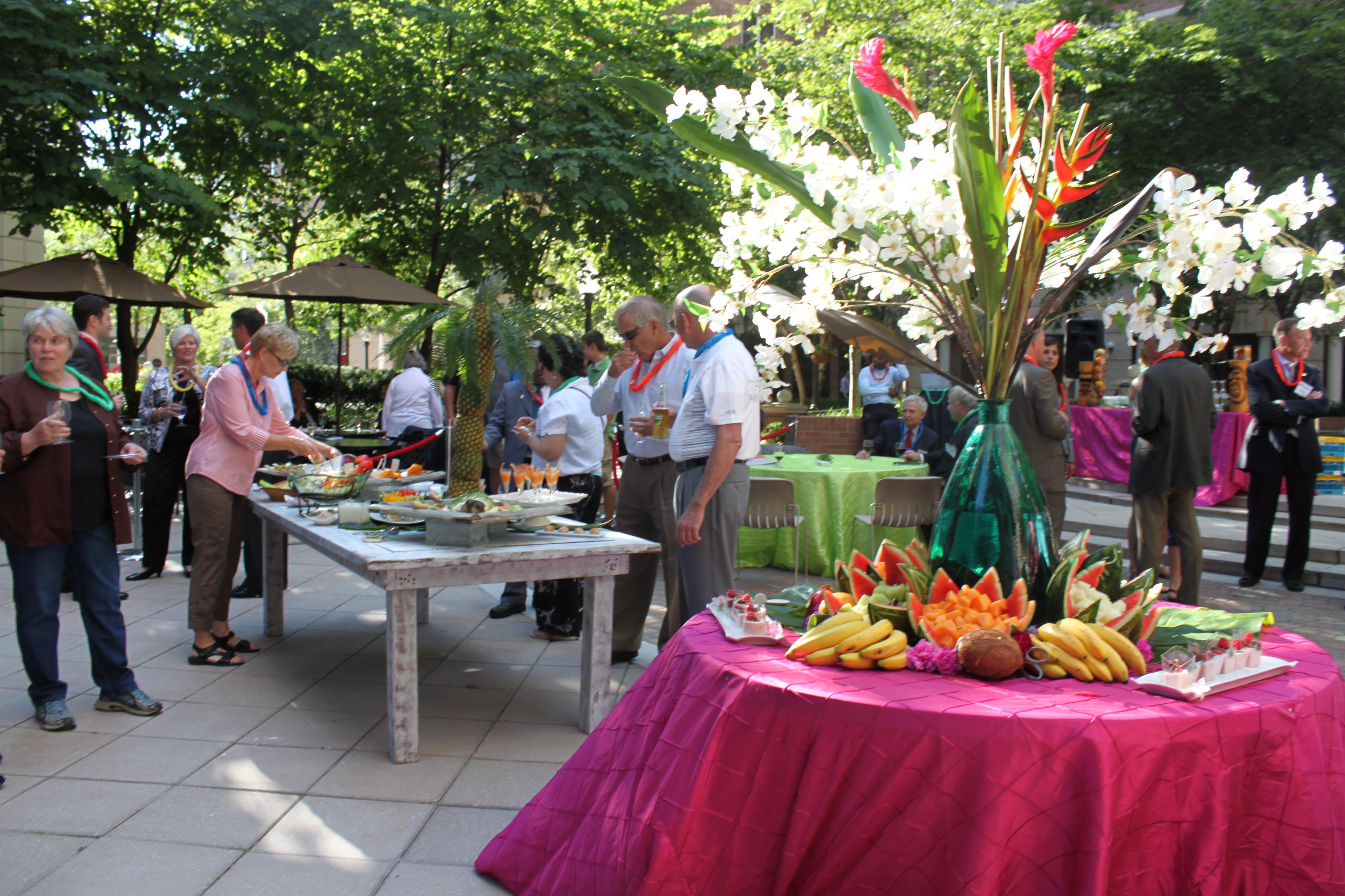 Hawaiian Backyard Party Ideas  Hawaiian Luau Party