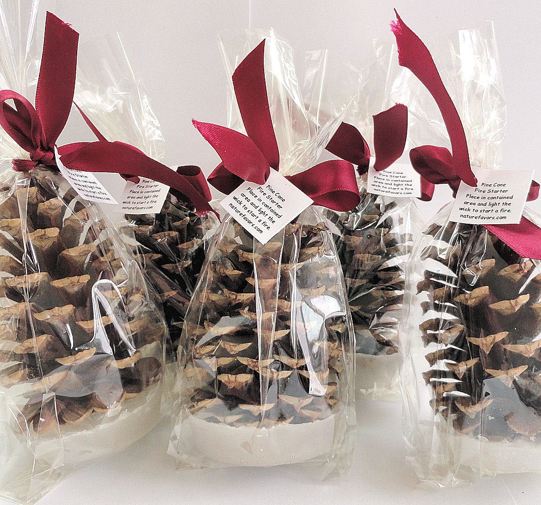 Holiday Party Gift Ideas  25 Pine Cone Fire Starter Christmas Party Favors Holiday