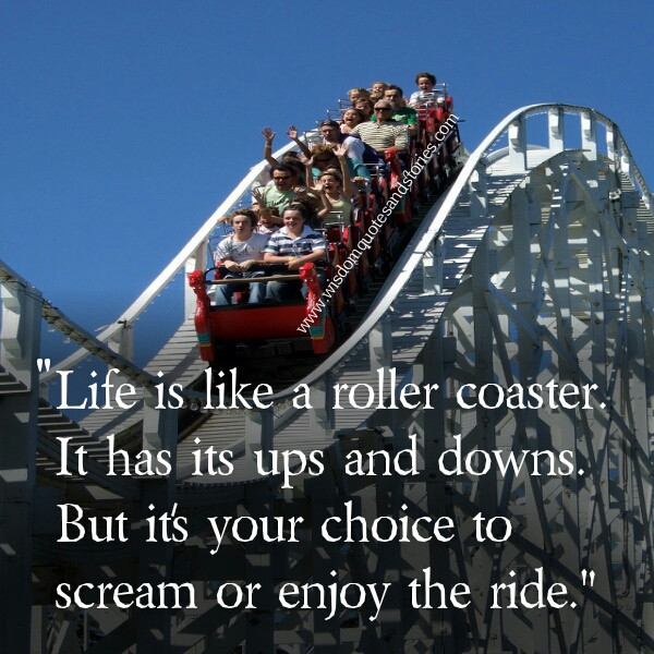 Life Is Like A Rollercoaster Quote  Lifes A Roller Coaster Quotes QuotesGram
