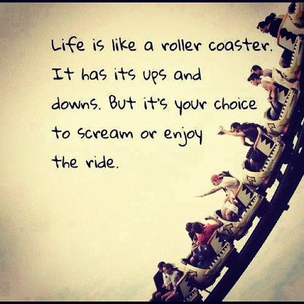 Life Is Like A Rollercoaster Quote  Life Is Like A Roller Coaster s and