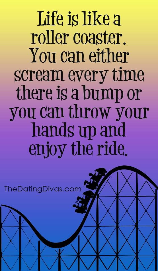 Life Is Like A Rollercoaster Quote  17 Best Roller Coaster Quotes on Pinterest