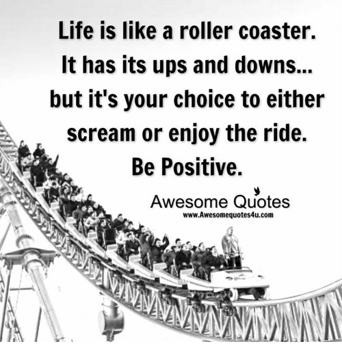 Life Is Like A Rollercoaster Quote  25 Best Memes About Awesome Quotes