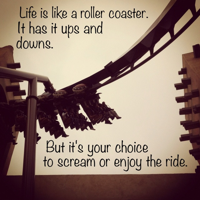 Life Is Like A Rollercoaster Quote  17 Best images about My Life goes like this