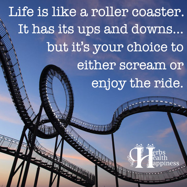 Life Is Like A Rollercoaster Quote  Life Is Like A Roller Coaster ø Eminently Quotable