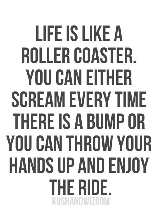 Life Is Like A Rollercoaster Quote  Shedding more than pounds update on my journey to