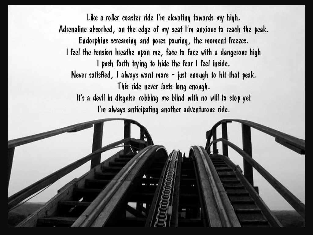 Life Is Like A Rollercoaster Quote  Quotes About Life Is Like A Roller Coaster QuotesGram