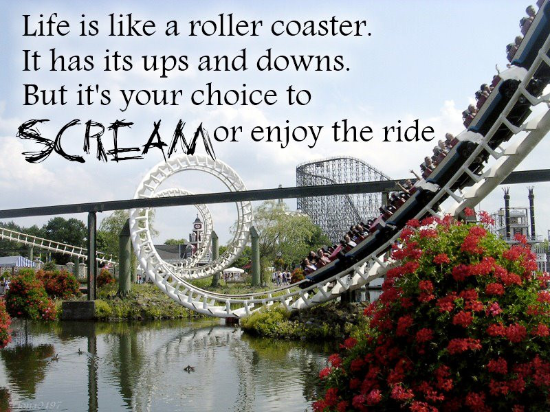 Life Is Like A Rollercoaster Quote  Quotation