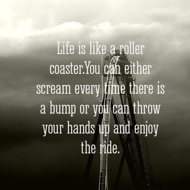 Life Is Like A Rollercoaster Quote  Motivational Quotes Life Is A Roller Coaster QuotesGram