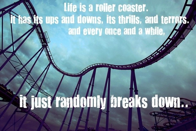 Life Is Like A Rollercoaster Quote  Quote About Life Is Like A Roller Coaster