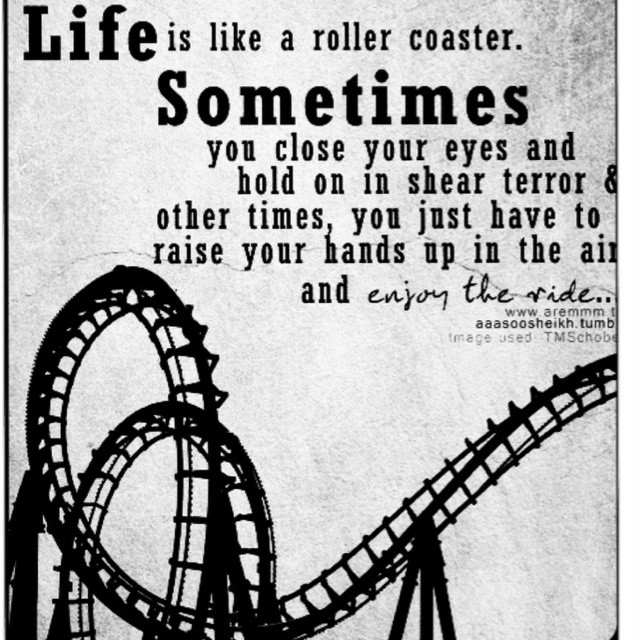 Life Is Like A Rollercoaster Quote  Quotes About Roller Coasters QuotesGram