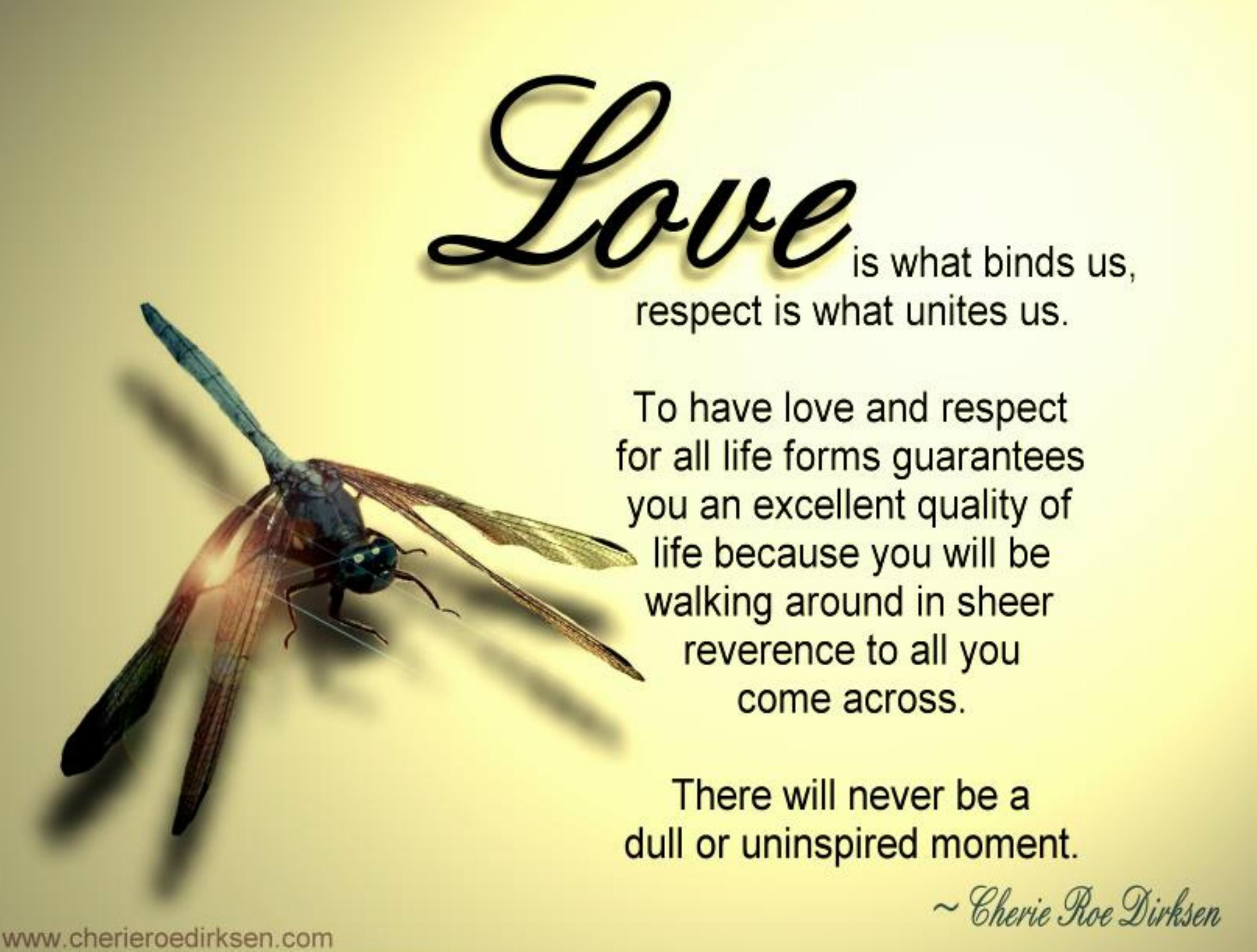 Love And Life Quotes  Free Wallpaper Quotations