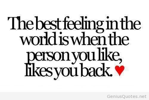 Love Feeling Quotes  Top 50 feeling in love quotes for lovers with 3D images