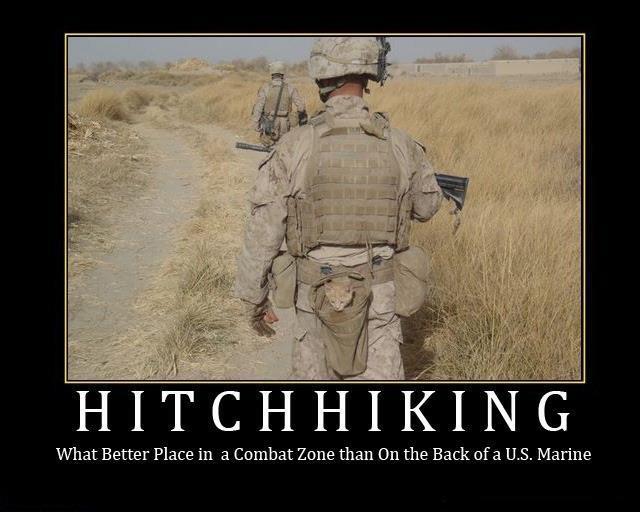 Marine Corps Inspirational Quotes  Motivational Quotes For Marine Recruits QuotesGram
