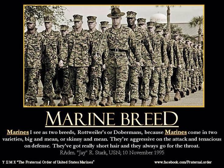 Marine Corps Inspirational Quotes  468 best Marine Corps Motivation images on Pinterest