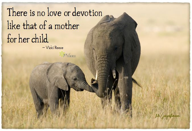 Mother And Childrens Quotes  25 best Mother Child Quotes ideas on Pinterest