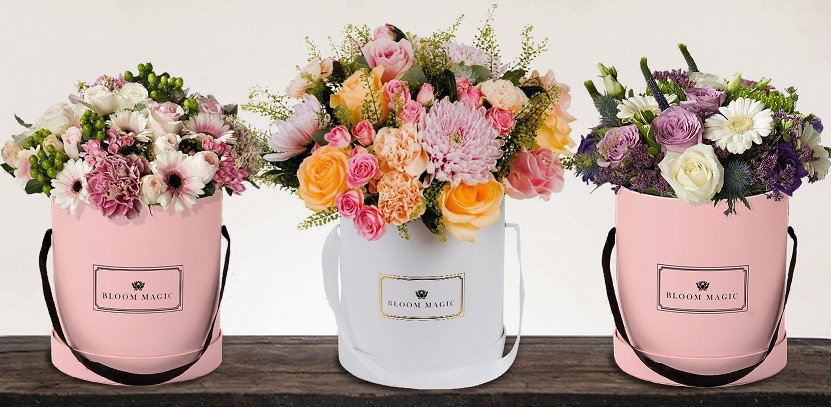 Mother'S Day 2019 Gift Ideas  Wel e to the Bloom Magic Blog