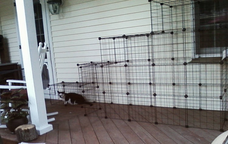 Outdoor Cat Enclosure DIY  How to build your own catio from Cat and Caboodle