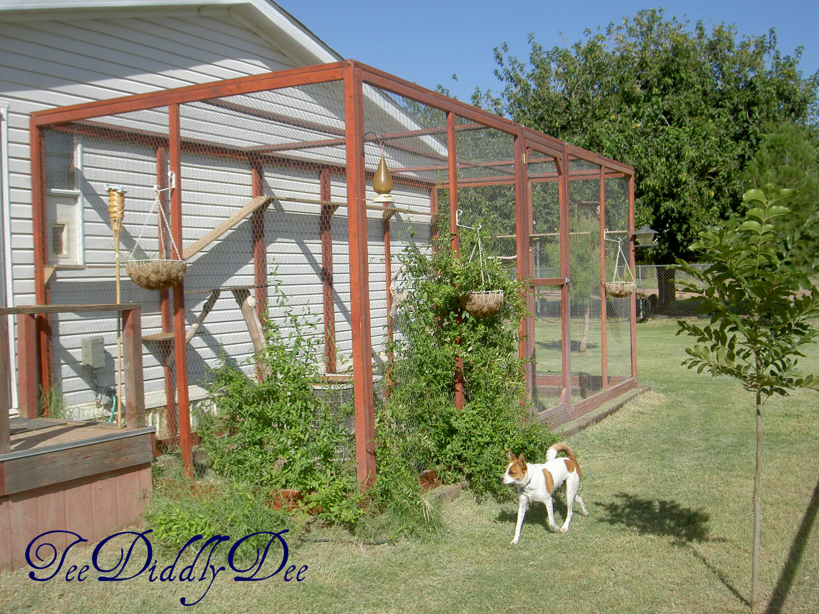 Outdoor Cat Enclosure DIY  How To build an outdoor cat enclosure or catio
