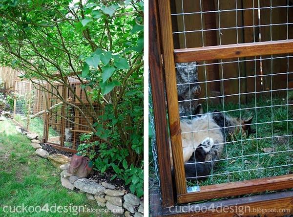 Outdoor Cat Enclosure DIY  Easy DIY Cat Enclosure to keep your indoor cats happy and safe