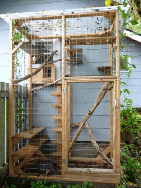 Outdoor Cat Enclosure DIY  51 Outdoor Cat Enclosures Your Cat