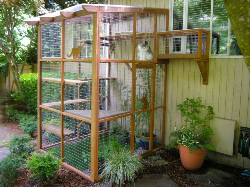 Outdoor Cat Enclosure DIY  It's Easy to Build a DIY Catio for Your Cat Catio Spaces