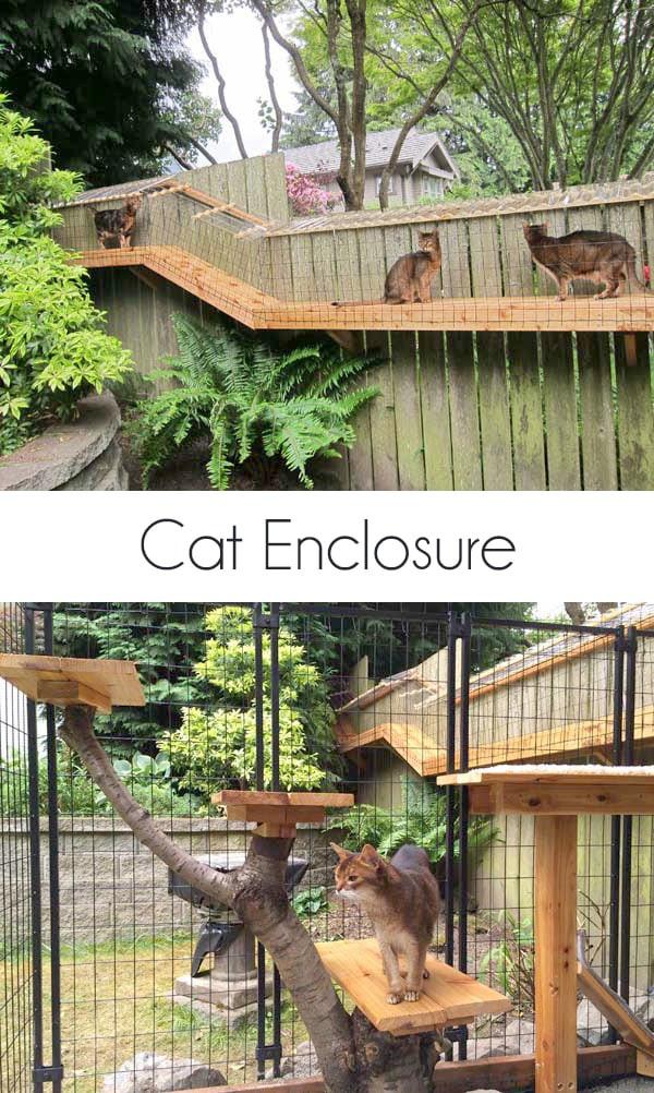 Outdoor Cat Enclosure DIY  Awesome DIY backyard Cat Enclosure