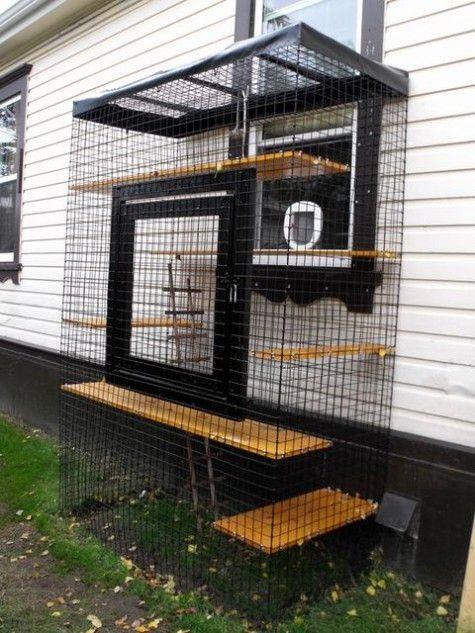 Outdoor Cat Enclosure DIY  Best 20 Outdoor cat enclosure ideas on Pinterest