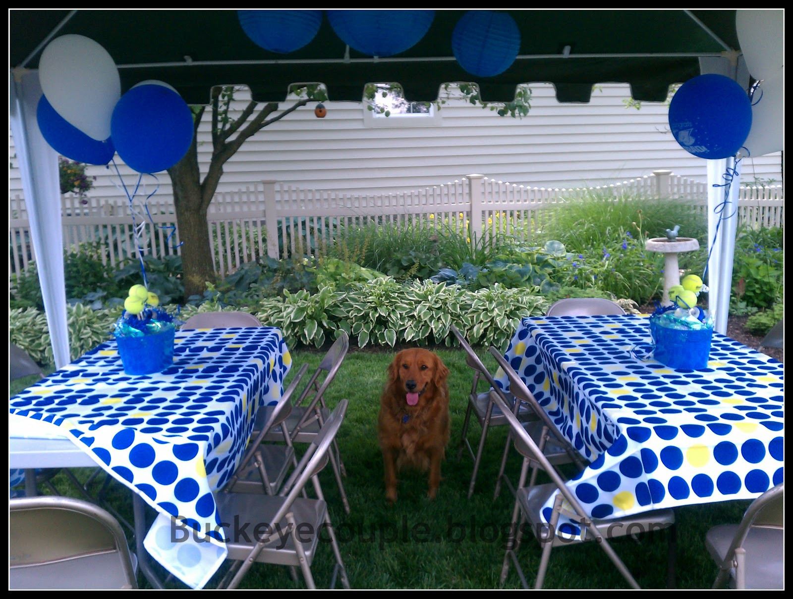 Outside Graduation Party Ideas  Not So Newlyweds Graduation Party