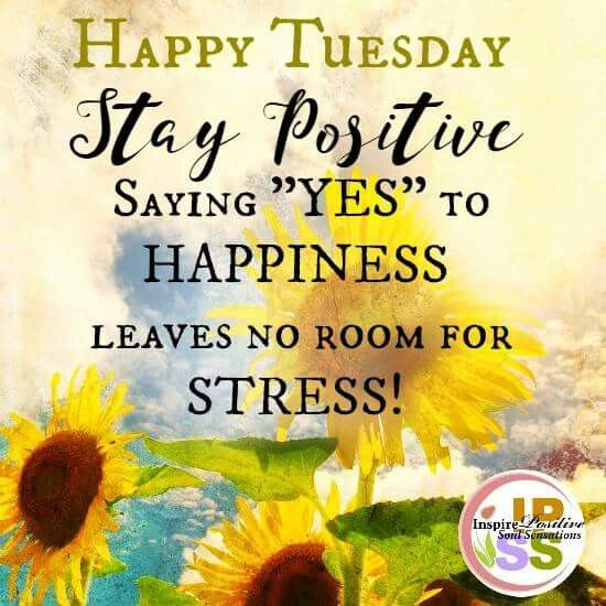 Positive Tuesday Quotes  Happy Tuesday Good Morning