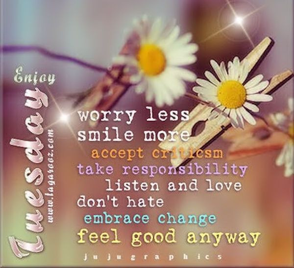 Positive Tuesday Quotes  The 25 best Happy tuesday quotes ideas on Pinterest