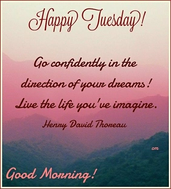 Positive Tuesday Quotes  Good Morning Happy Tuesday goodmorning