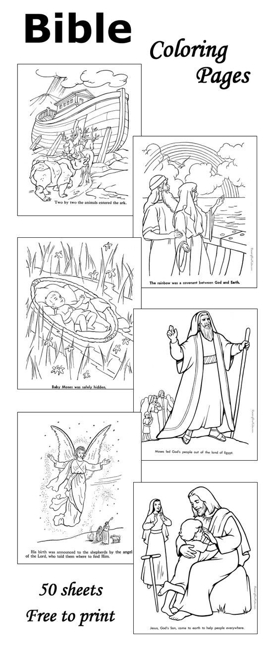 Printable Bible Coloring Pages For Toddlers?Trackid=Sp-006  Bible coloring pages 50 sheets Kid Stuff