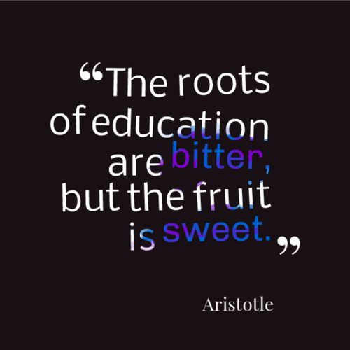 Quotes About Education Importance  Best 25 Importance of education quotes ideas on Pinterest