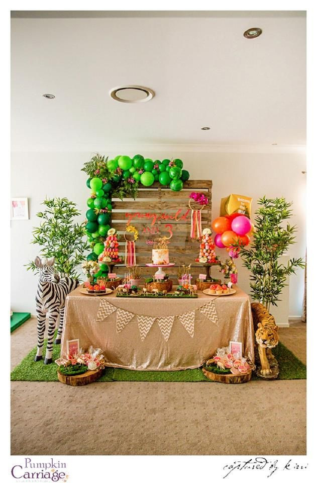 Safari Birthday Party Decorations  Modern safari party The Pumpkin Carriage