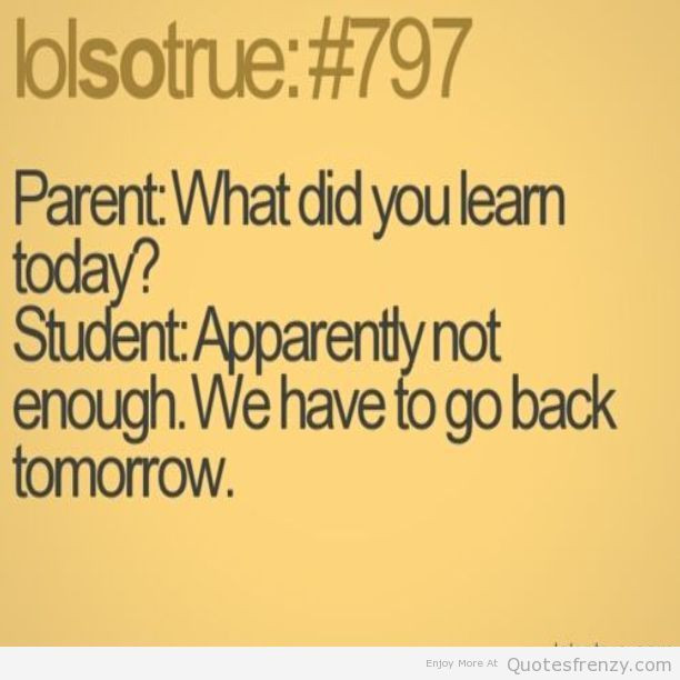 School Quote Funny  funny quotes about school Google Search funny